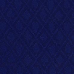 Sapphire Suited Speed Cloth